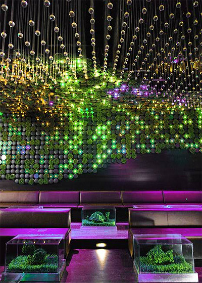 Nightclub Design - First LEED certified Club in the US | Mindful