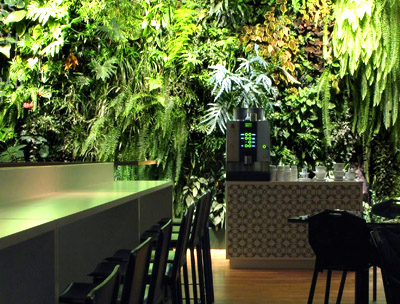 Green Wall in Restaurant