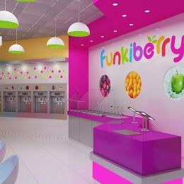 Funkiberry frozen yogurt shop interior design and branding