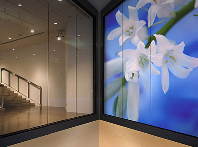 One way vision window graphic film mindful design consulting for Window graphics