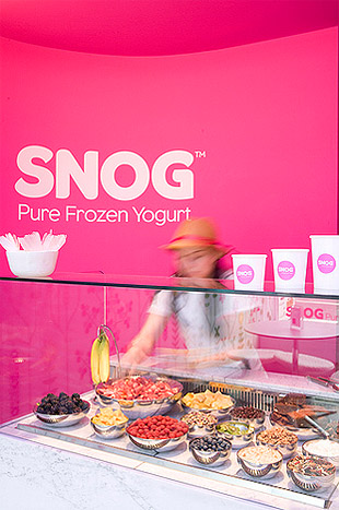 Yogurt Store Branding Colors