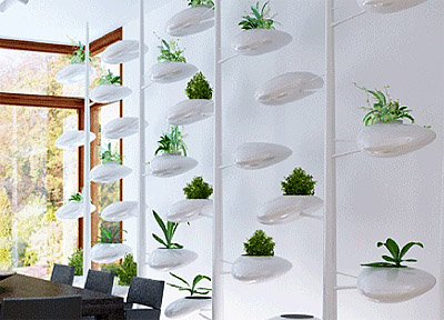 Wall Interior Design life screen - simplified solution for green wall - commercial