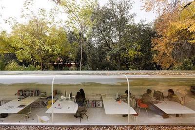 Nature inspired office design