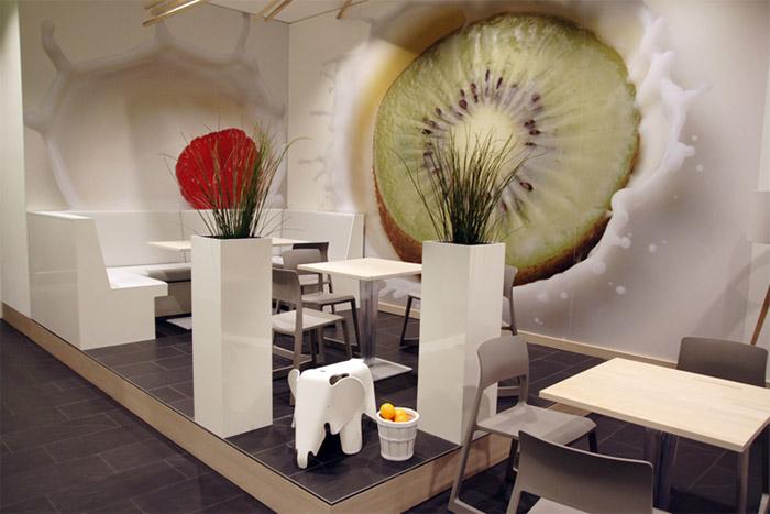 Frozen Yogurt Shop Interior Design