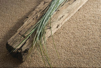 environmental carpet