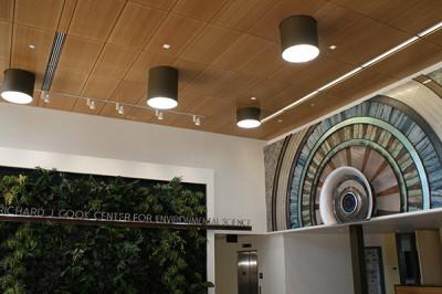 Solar Tubes in Interior Design