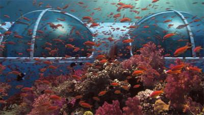 Underwater Hotel View