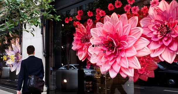 Apple Store Front with Flowers