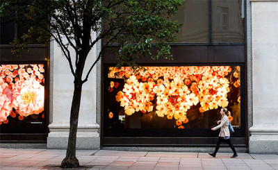Store Window Display