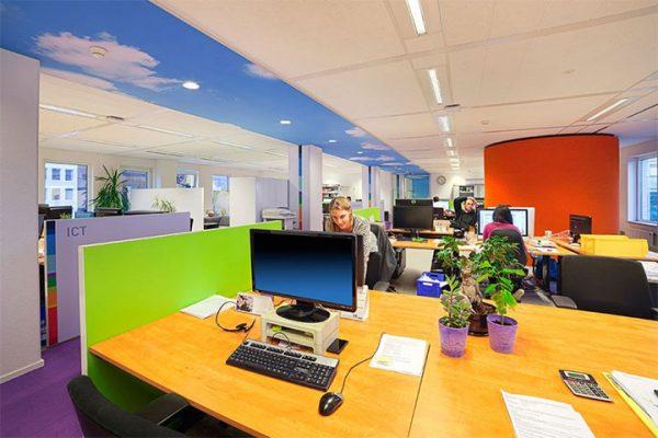 Colorful Office Design Makes Room for Landscapes