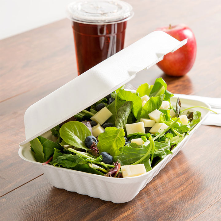 Eco-friendly food packaging made of compostable sugar cane