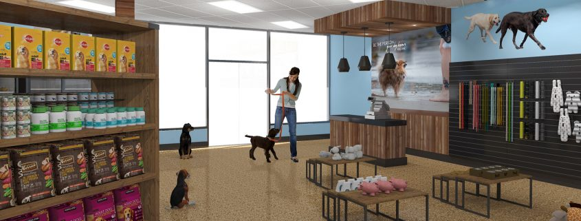 Pet store interior design