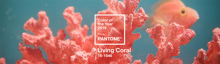 Pantone-2019-Color-Year-Living-Coral