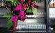 Pink fresh flower bouquet against bar