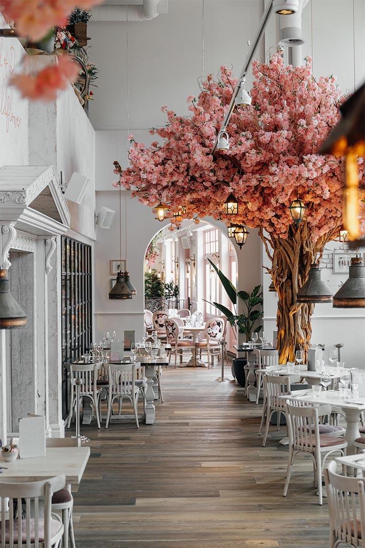 Blooming tree used inside restaurant