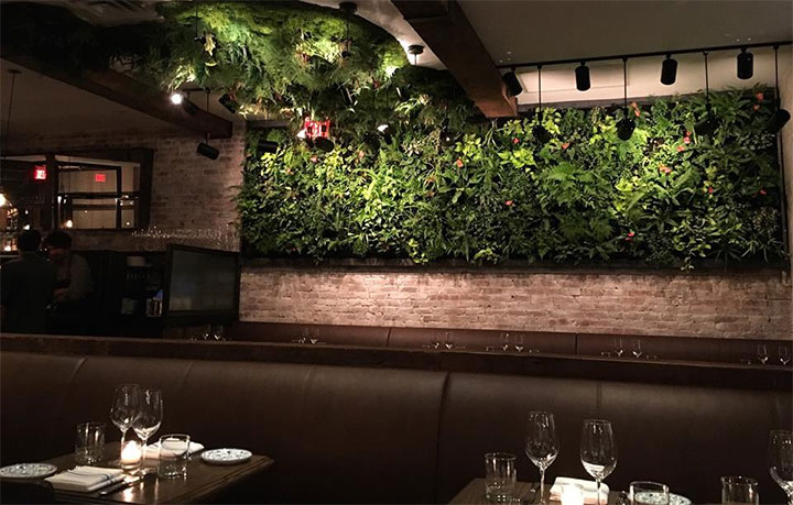 Green wall of luxuriant plants in romantic restaurant